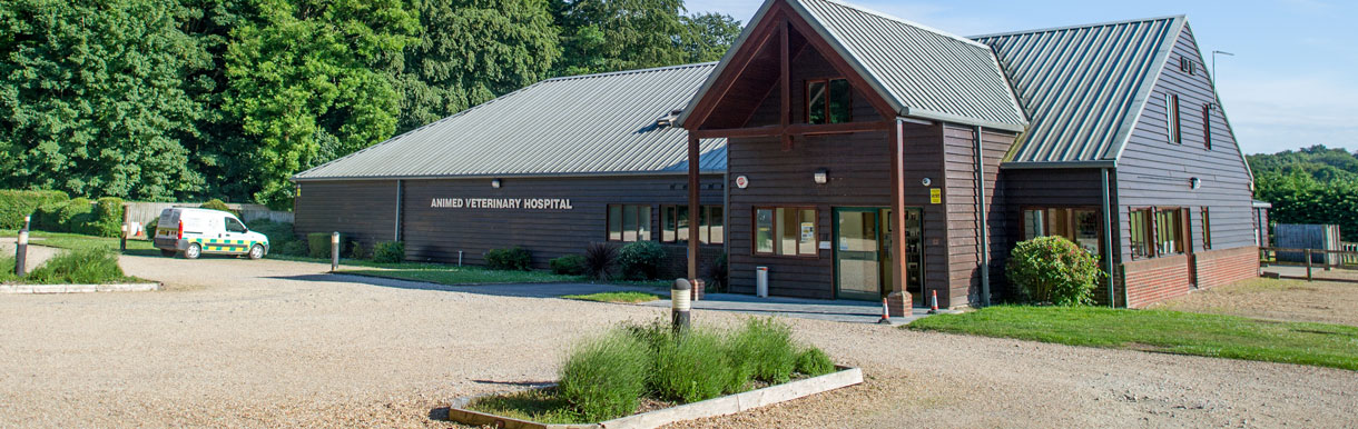 Shedfield Hospital